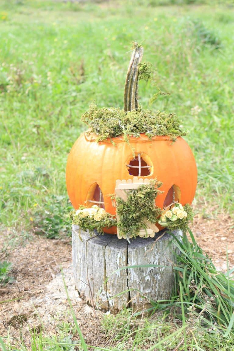 pumpkin-fairy-house