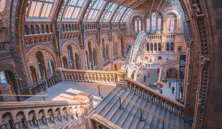 Guide to London · Natural History Museum London · The Natural History Museum