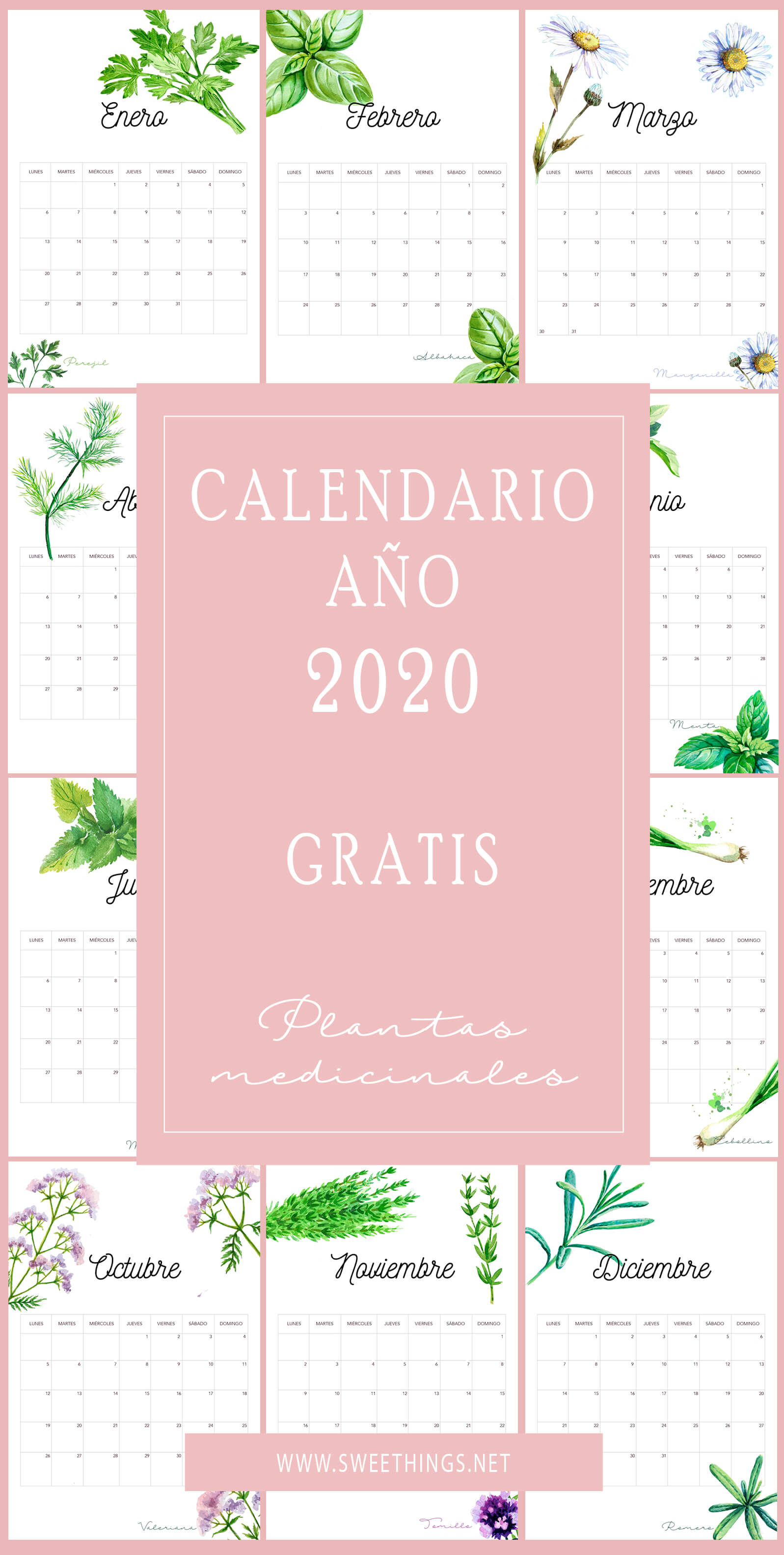 Calendario 2020 plantas gratis para descargar · Via www.sweethings.net
